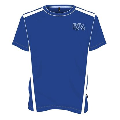 Picture of Two-tone round neck t-shirt (Royal blue and white)
